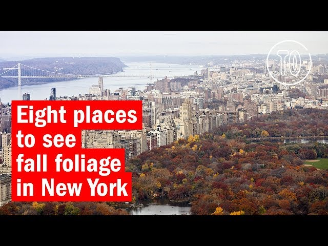 Fall Foliage In New York From Central Park To The Catskills