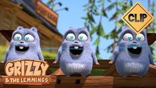 Grizzy a un parfum irrésistible !! - Grizzy & les Lemmings