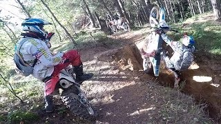 Hill Climb + Logs + Woods + Fails = Fun