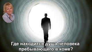Где находится душа человека пребывающего в коме?