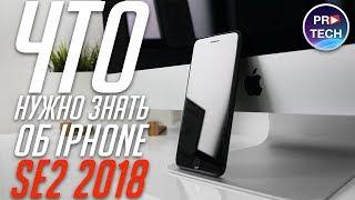 iPhone SE 2 (2018): дата релиза, характеристики, цена, дизайн | ProTech