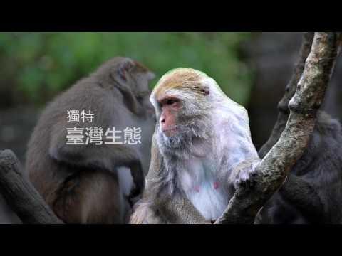 臺北市立動物園 歡迎您