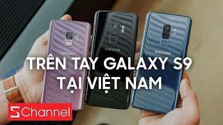 Đặt Galaxy S9 sớm, nhận quà khủng tại CellphoneS: https://cellphones.com.vn/samsung-galaxy-s9-chinh-hang.html?utm_source=pr&utm_medium=schannel&utm_campaign=/samsung-galaxy-s9-chinh-hang.html-3  Cùng Schannel trên tay nhanh chiếc Samsung Galaxy S9 nhé ! Samsung Galaxy S9 và S9 Plus cung cấp những tính năng mới với chế độ quay video siêu chậm Super Slow-mo, camera khẩu độ kép tuyệt đỉnh và biểu tượng cảm xúc thông minh AR Emoji.  ✌️ Liên hệ quảng cáo, hợp tác - Huy: quangcao.schannel@gmail.com hoặc http://fb.com/huy.nl