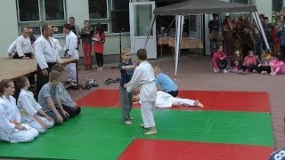 preview picture of video 'AiKiDo bemutató, Baja, Hungary, 2014.05.31.'
