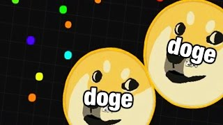 DOGE RAMPAGE | AGARIO w/ MODS + ALL Skins List - NEW CHANNEL ANNOUNCEMENT (Agar.io Gameplay)
