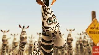 DreamWorks Madagascar em Português | Alex y Marty Clipe de Filme - Madagascar 2 | Desenhos Animados