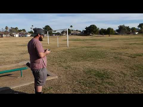 LDARC Fly Egg 130 Brushless - Joe Flying at Park with a Snatch and Grab Tree Branch Crash(60fps)