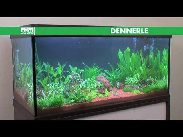 Macenauer TV - Osvětlení akvária - Dennerle: Akvaristou snadno a rychle 5. díl