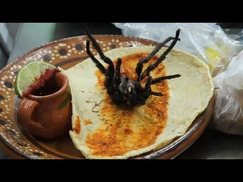 العرب اليوم - شاهد: أحدث إصدارات المطبخ المكسيكي