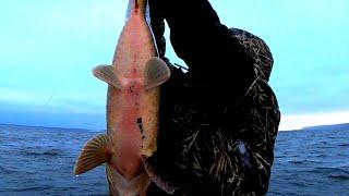 Зимняя рыбалка отчет о рыбалке