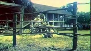 """Dəmirağaci"". tv oçerki. (1971) Железное дерево"