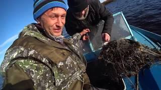 Промышленная ловля камбалы в черном море