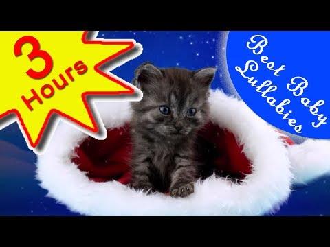 🎅 Lullabies Songs To Put A Baby To Sleep Lyrics Baby Lullaby  Bedtime JINGLE BELLS  CHRISTMAS MUSIC