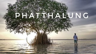 🇹🇭 Thailand's Hidden Gem : Phatthalung part 1/2 –  Art Thomya Journey – 2018
