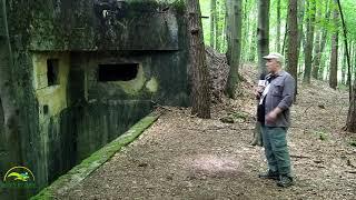 Na linii bunkrów Mołotowa