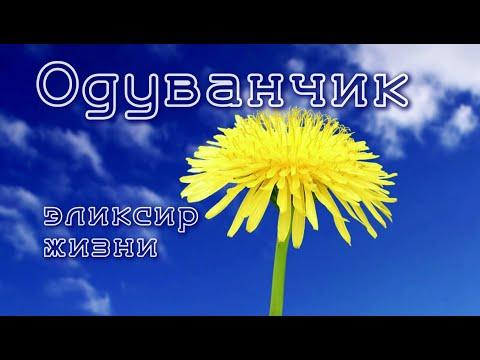 Калининград аденома простаты