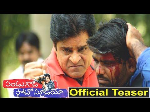 Pandugadi Photo Studio Official Teaser Latest Telugu Movie Trailer   Comedian Ali  Niharika Movies