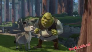 [Collab Entry] Shrek Allows Donkey To Sneeze