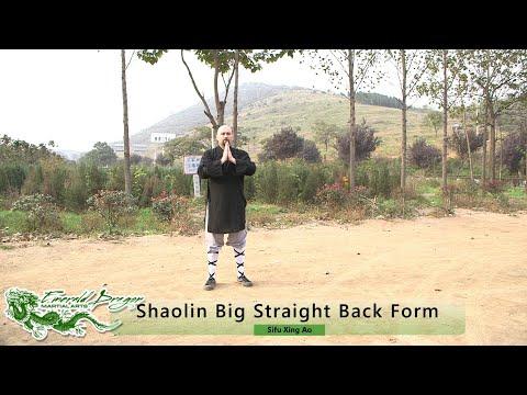 Shaolin Big Straight Back Fist - Shaolin Da Tong Bi Quan (少林大通臂拳)