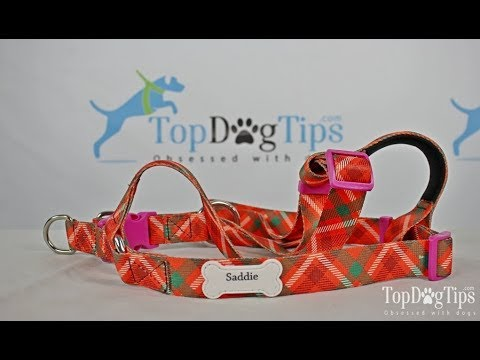 PrideBites Step In Dog Harness Review (2018)