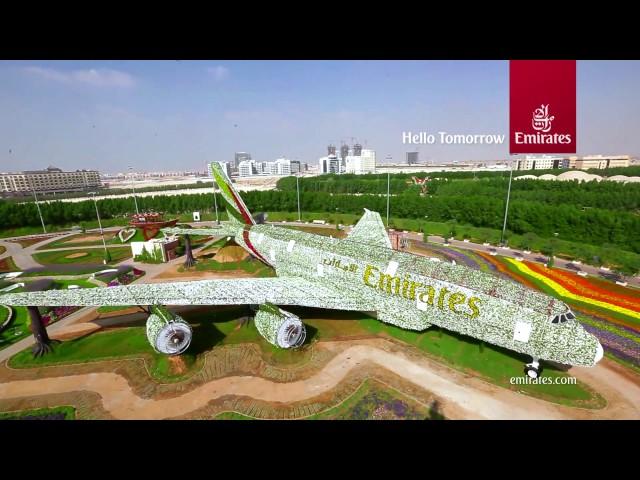 sportourism.id - Cantiknya-Pesawat-Emirates-Berlapis-Bunga-di-Dubai-Miracle-Garden