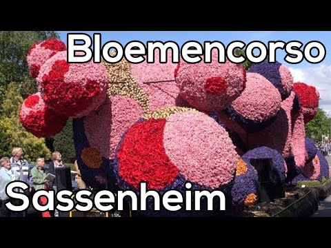 Dutch Flower Parade - Bloemencorso Sassenheim 2014