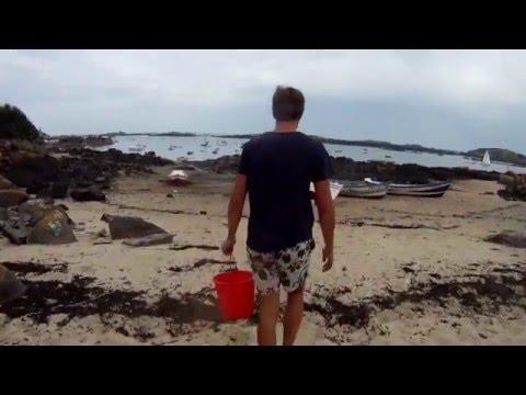 Le crabe le parasite sakkoulina