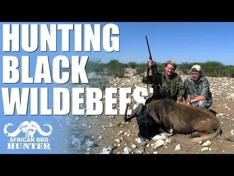 African BBQ Hunter – black wildebeest in Namibia