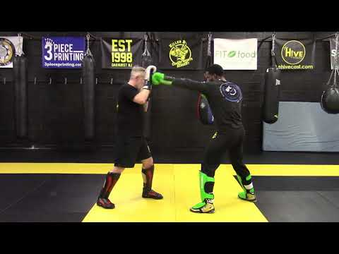 Punch Fundamentals with Partner