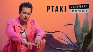 Kadr z teledysku Ptaki tekst piosenki Krzysztof Zalewski