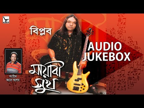 Mayabi Shukh | মায়াবী সুখ | Biplob | Audio Jukebox