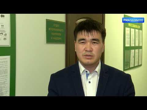Управлением Россельхознадзора на территории Республики Калмыкия выявлены нарушения требований ветеринарного законодательства