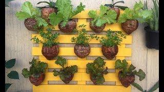 Horta Vertical Sustentável