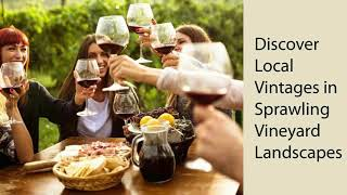 Very charming Chilean Wine Tours