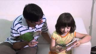 What is the Best Parrot or Parakeet for a Child?