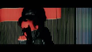Per W/Pawlowski - Stand Up Chameleon