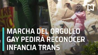 Niños Transgénero   Marcha de orgullo Gay luchará por el reconocimiento de infancia Trans - En Punto