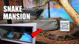 Rescued Pet Snake Gets His Dream Home (It's a python mansion!)