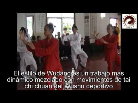Wudang Taiji y Hun Yuan Taiji
