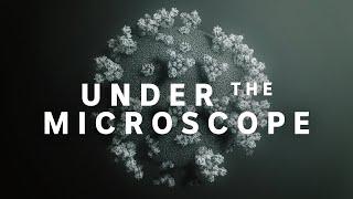 Coronavirus: Under the microscope | ABC News