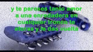 Elefante-La Planta-La Ramera letra