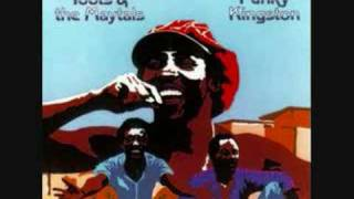 Toots & The Maytals - Love Is Gonna Let Me Down