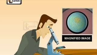 Microscope and its working - Science