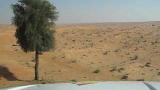 preview picture of video 'В пустыне эмирата Umm Al Quwain'