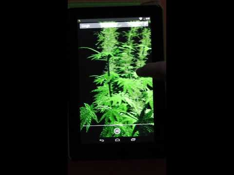 Video of Weed 3D Live Wallpaper