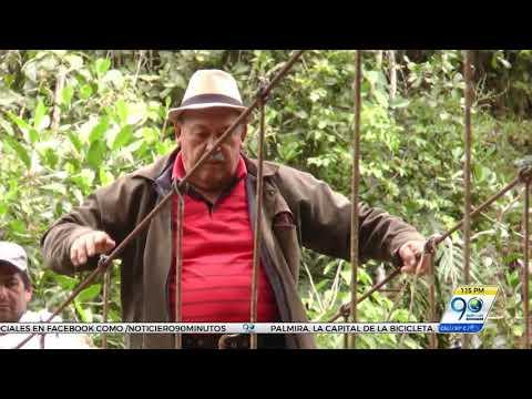 Campesinos del centro del Valle piden ayuda para reparar puente que los pone en peligro