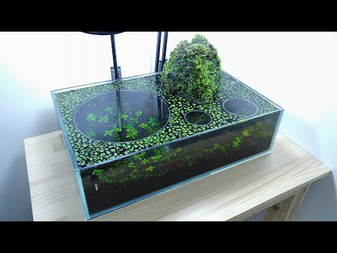 Guy makes a lil volcano aquarium ecosystem. Surprisingly calming to watch