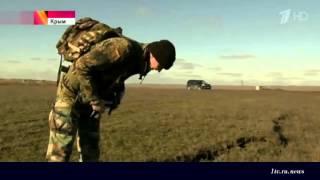 В Крыму активизировался вулкан из лечебной грязи