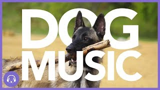 Dog Music: Deeply Soothing Dog Playlist!