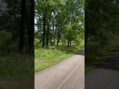 hiking trails behind site